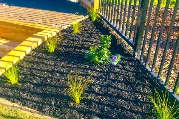createscape_landscaping_rangiora_pegasus_north_canterbury_small_92