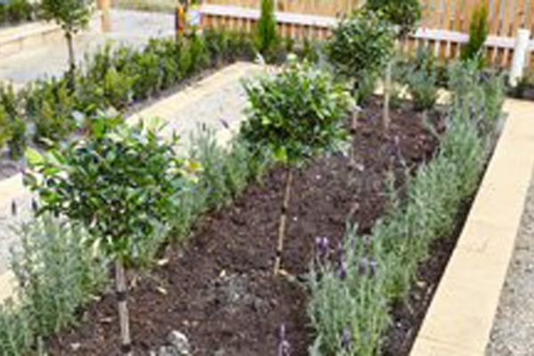 createscape_landscape_and_garden_inspiration_10